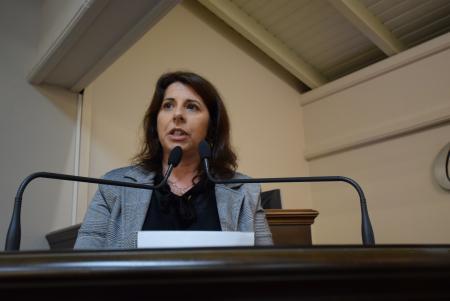 Rosi solicita à Prefeitura calçamento e cuidados com iluminação pública