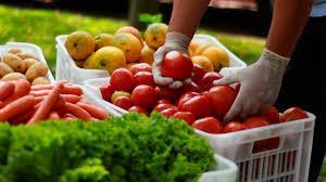 Solicita-se informações sobre famílias que necessitam alimentos