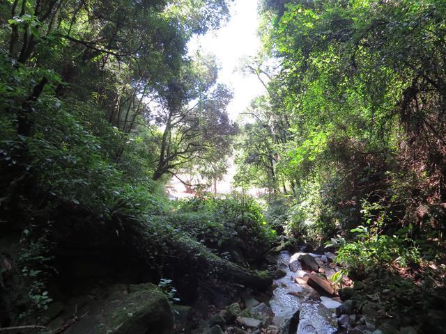 Despoluição de cascatas e córregos é tema de pedido