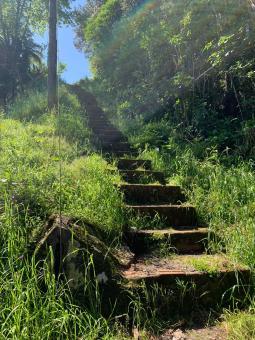 Requerido estudos de melhorias no Villagio e na Prinstrop